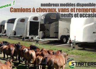 camions-vans-chevaux-remorques-pub-starterre