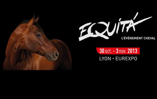 L edition 2013 du salon equita lyon actu starterre - Salon du cheval de lyon ...