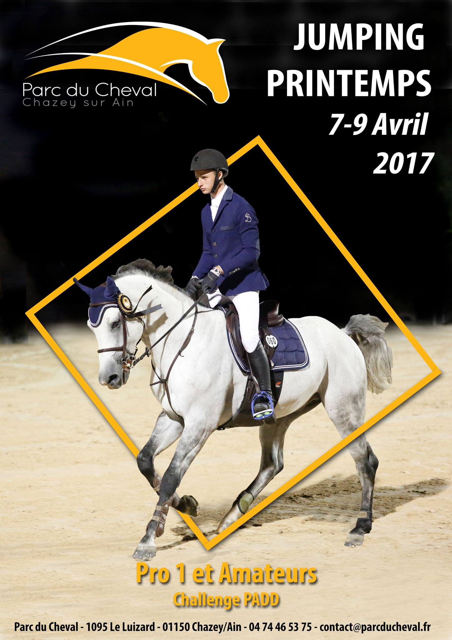 jumping-printemps-chazey-7-9-avril-2017